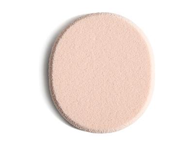 Flat Sponge